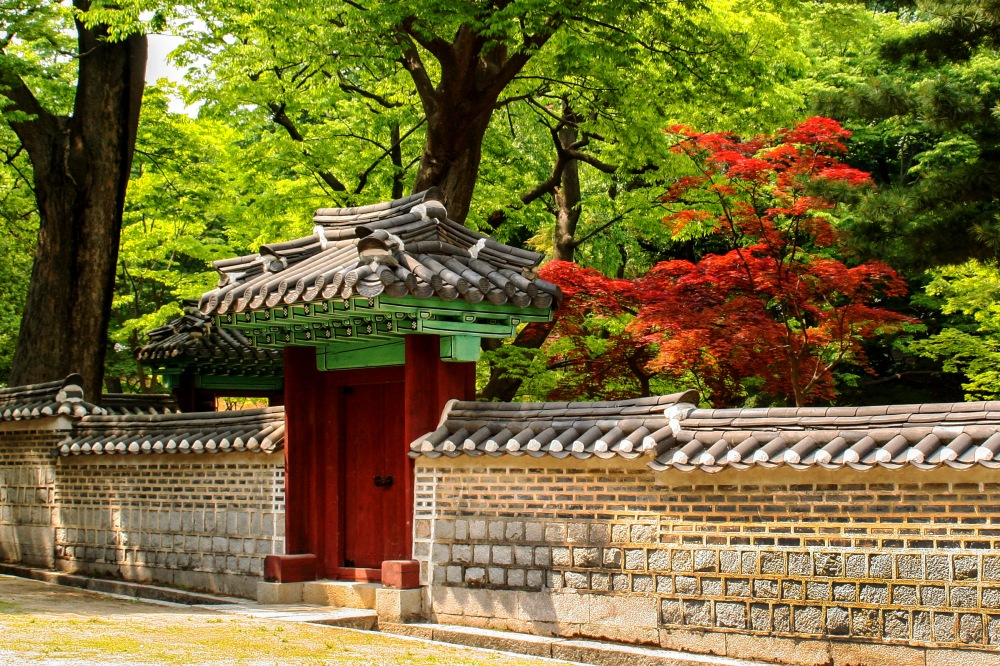 a gr korea 001xx