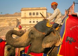 a India 021