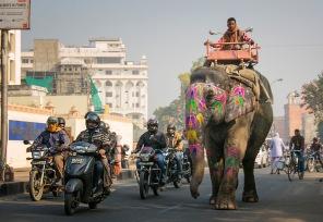 a India 071