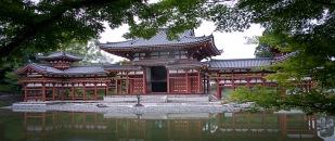 a KyotoMD 004