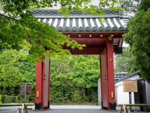 a KyotoMD 012
