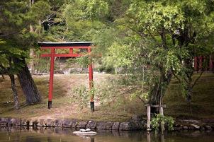 a KyotoMD 018