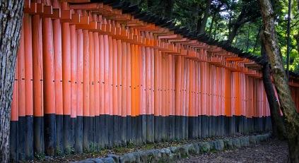 a KyotoMD 028