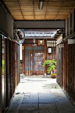 a KyotoMD 037