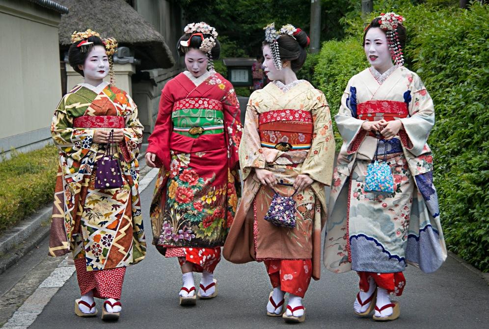 a KyotoMD 049