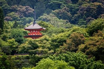 a KyotoMD 052