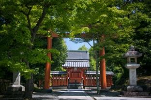 a KyotoMD 059