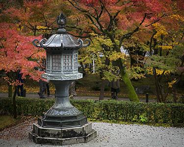 Japan-Crop