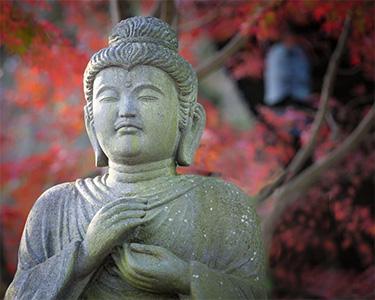 Kamakura-Crop