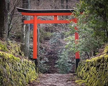 Kyoto3-Crop