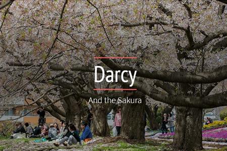 x darcy