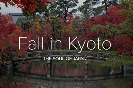 x kyoto